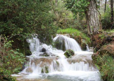 Entorno Cortijo del Rey - Pozo de Alcon, Cazorla