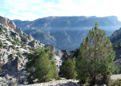 Entorno del Cortijo del Rey - Sierra de Castril
